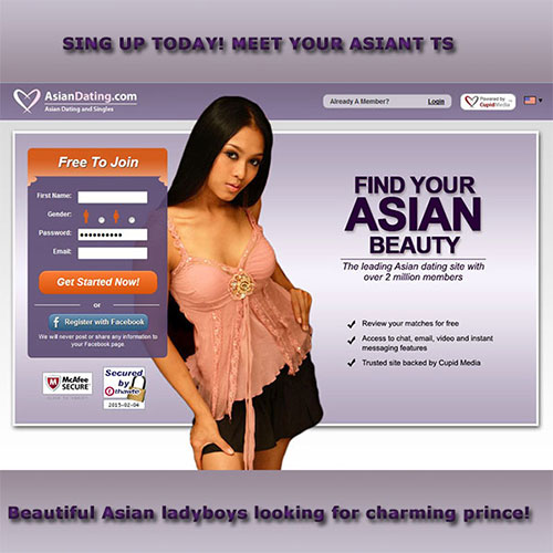 transexual online dating
