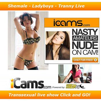 webcams trans ladyboys tranny live