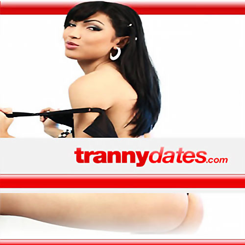 Tranny dates - Meet local shemale